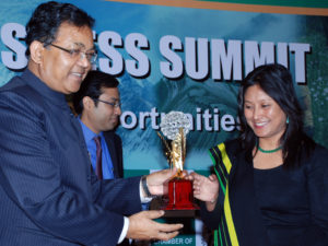 ICC North East Excellence Award 2012