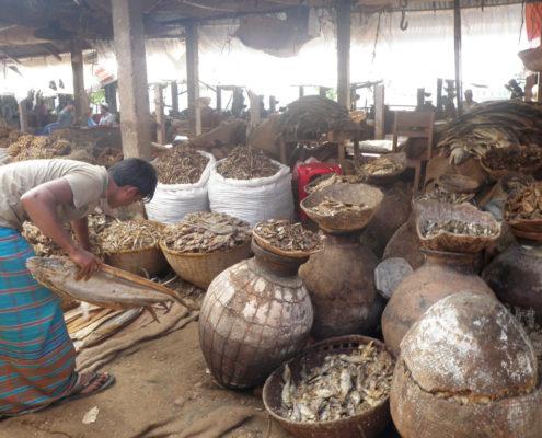 The Dry Fish Economy